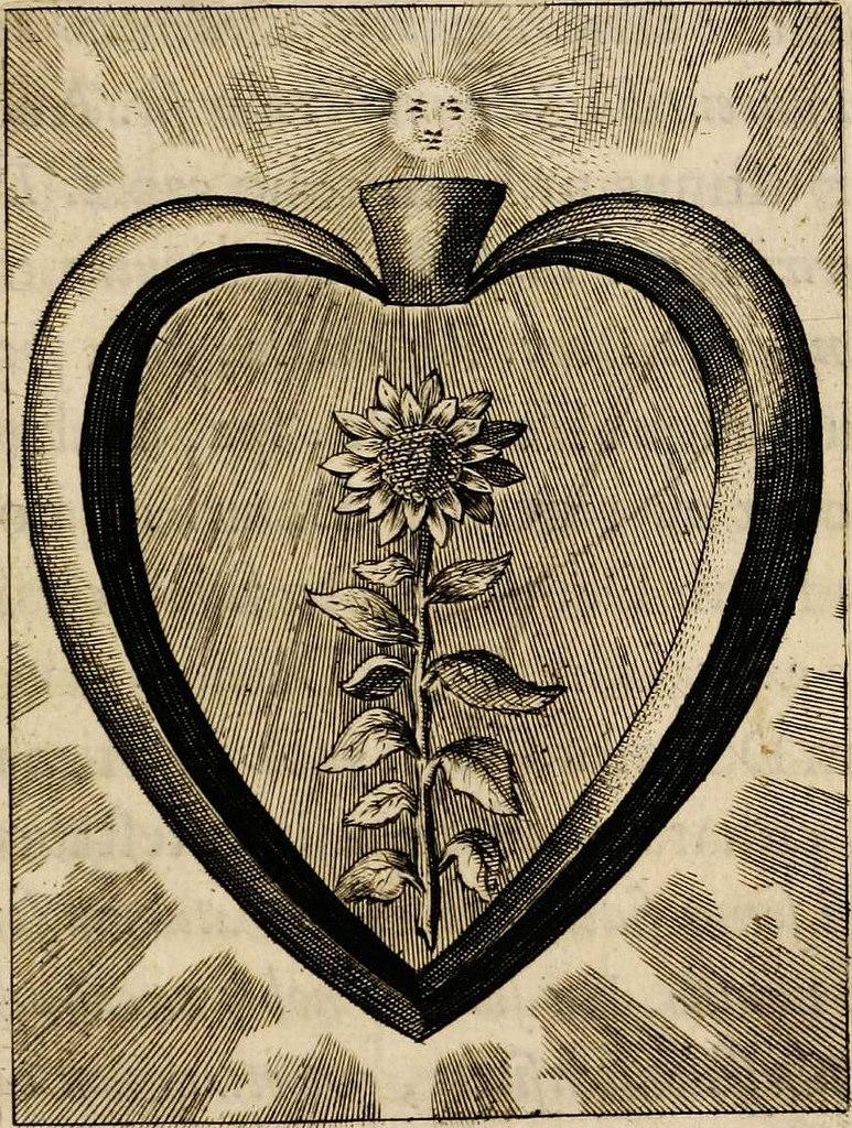 Sacrum oratorium piarum imaginum immaculatae Mariae et animae creatae ac baptismo, poenitentia, et eucharistia innouatae 3