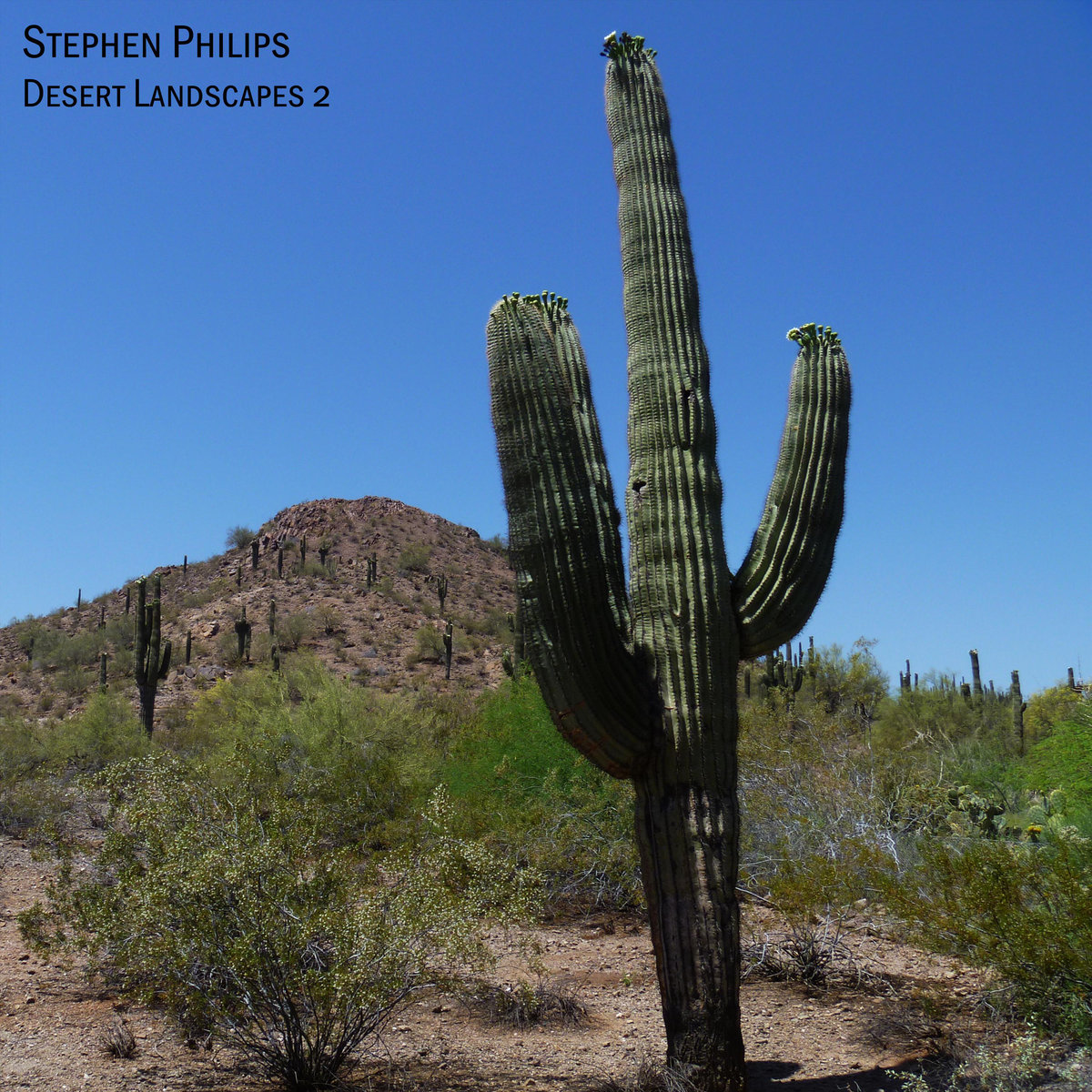 Stephen Philips: Desert Landscapes 2 (CD, DDR#300, Dark Duck Records, 2014)