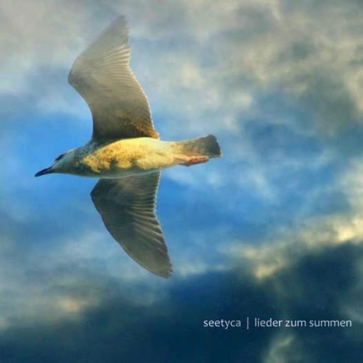 Seetyca: Lieder Zum Summen (CD, gterma038, gTerma, 2014)