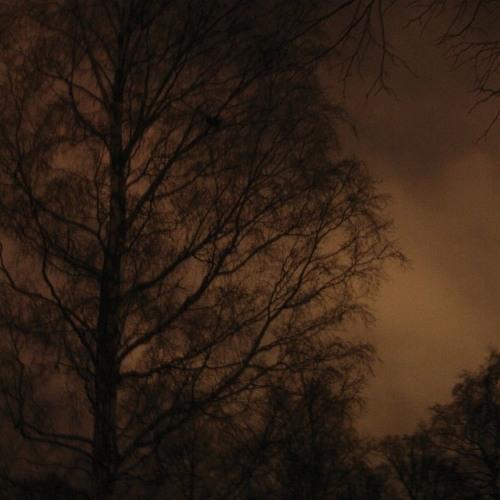 Noční sedánky